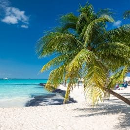 Krystal Cancun Timeshare Highlights Top Cancun Travel Tips for the Spring Season